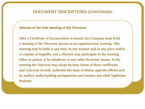 Minutes of the first meeting of the directors